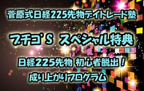 菅原式日経225先物デイトレード塾ブチコスペシャル特典